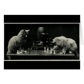 Cats Playing Chess Card