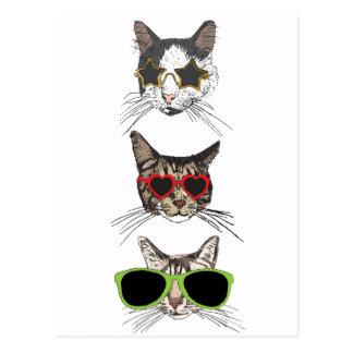 Cats Wearing Sunglasses Postcard