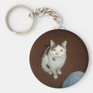 cats xD 002 Basic Round Button Keychain