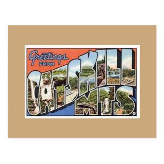 Catskill Mts. Vintage Postcard