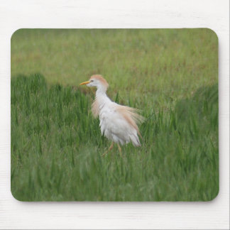 Cattle Egret Bird Mousepad