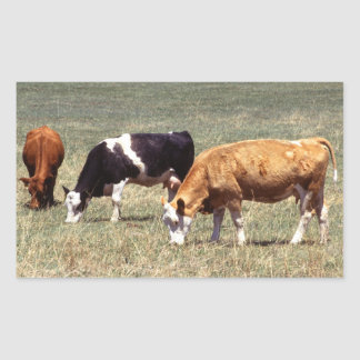 Cattle Farm Sticker