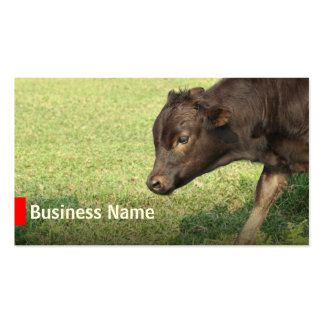 Cattle Farming Beef Ranch Business Cards