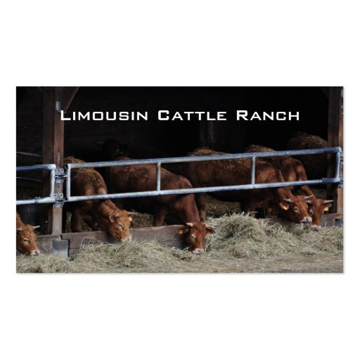 Cattle feeding business card