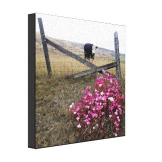 Cattle on Canvas