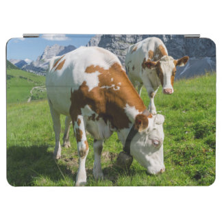 Cattle On High Pasture In Karwendel Mountain 2 iPad Air Cover
