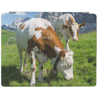 Cattle On High Pasture In Karwendel Mountain 2 iPad Cover