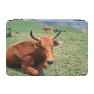 Cattle On Hill, Eastern Cape, South Africa iPad Mini Cover