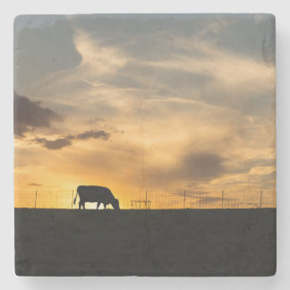 Cattle Sunset Silhouette Stone Coaster