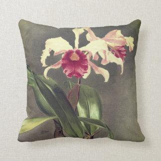 Cattleya Hybrida Arnoldiana Orchid throw pillow