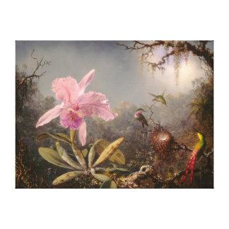 Cattleya Orchid and Three Hummingbirds Canvas Print