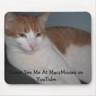 Caturday Fun Everyday! Mouse Pad