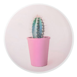 Catus in pink pot ceramic knob