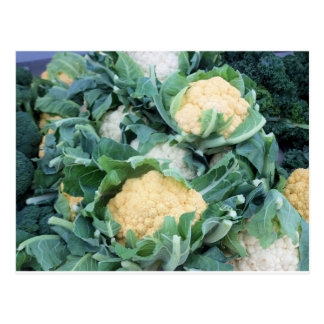 Cauliflower Bundle Postcard
