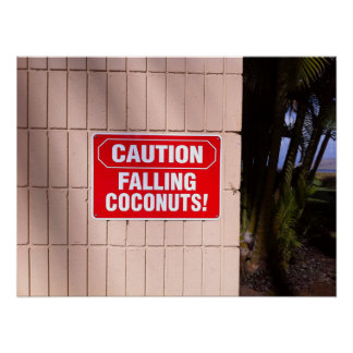 Caution - Falling Coconuts! Poster