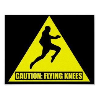 Caution: Flying Knees MMA/ Muay Thai Poster