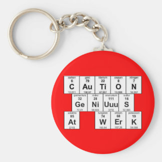 CAuTiON GeNiUuuS At WErK Keychain