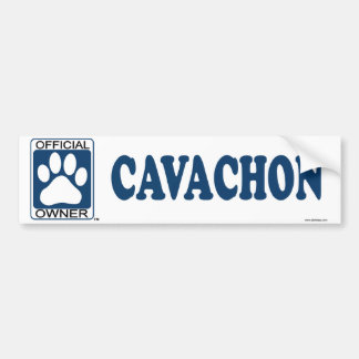 Cavachon Blue Bumper Sticker