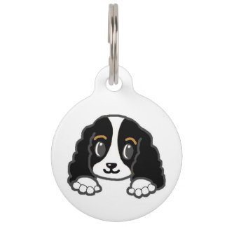 cavalier kcs peeking black and white pet ID tag