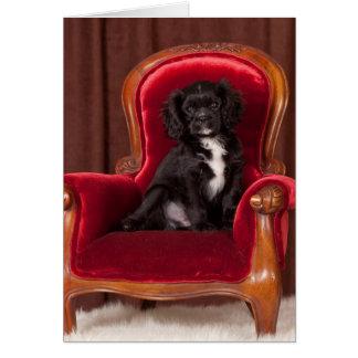 Cavalier King Charles Ace Card