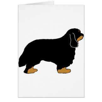 Cavalier King Charles black and tan silo Card