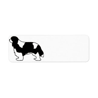 Cavalier King Charles black and white silo