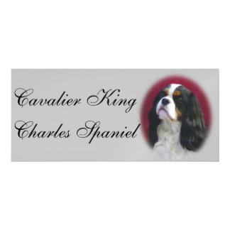 Cavalier King Charles Car Magnet Magnetic Invitations