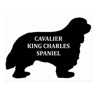 Cavalier King Charles name silo Postcard