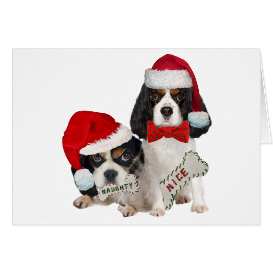 Cavalier King Charles Naughty or Nice gifts Card