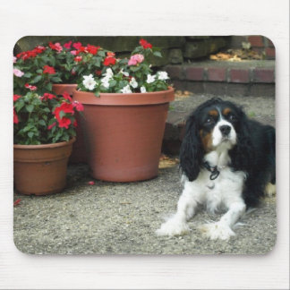 Cavalier King Charles Puppy Dog w/ Flowers Mouse Pad