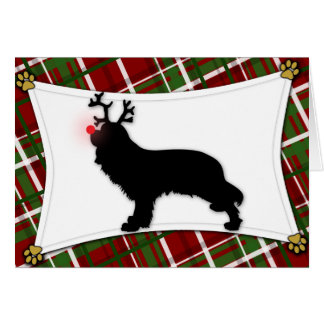 Cavalier King Charles Reindeer Christmas Card