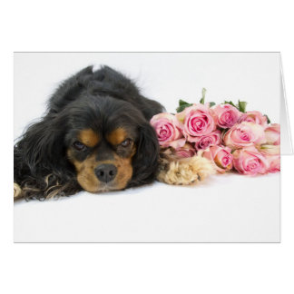 Cavalier King Charles Spaniel And Roses Card