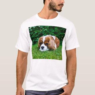 Cavalier King Charles Spaniel Blenheim in Grass T-Shirt