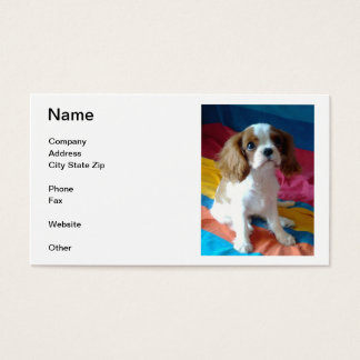 Cavalier King Charles Spaniel Business Cards