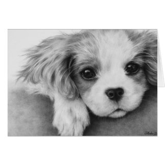 Cavalier King Charles Spaniel Dog Greeting Card