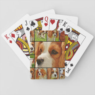 Cavalier King Charles Spaniel Dog Playing Cards