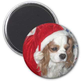 CAVALIER KING CHARLES SPANIEL DOG WITH SANTA HAT MAGNET