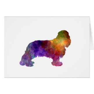 Cavalier King Charles Spaniel in watercolor Card