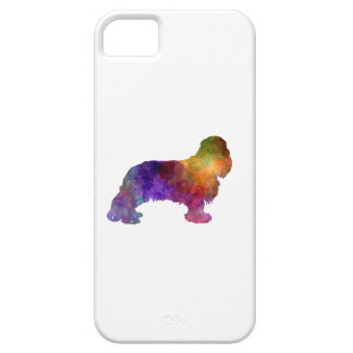 Cavalier King Charles Spaniel in watercolor iPhone 5 Cover