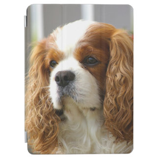 Cavalier King Charles Spaniel iPad Air Cover