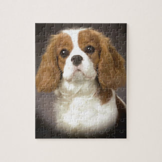 Cavalier King Charles Spaniel Jigsaw Puzzle
