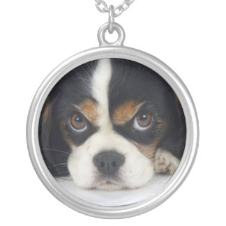 Cavalier King Charles Spaniel Necklace Tri-Colored