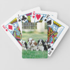 Cavalier King Charles Spaniel puppies Bicycle Playing Cards