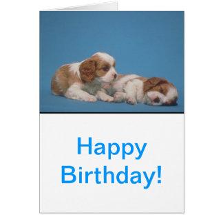 Cavalier King Charles Spaniel Puppies Card