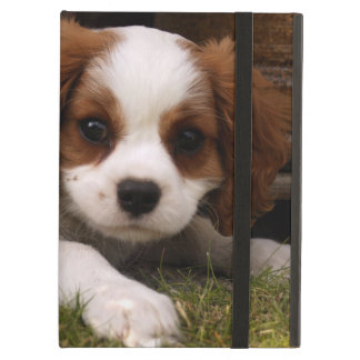 Cavalier King Charles Spaniel Puppy behind flowers iPad Air Cover