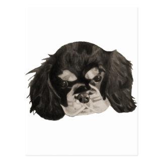 Cavalier King Charles Spaniel Puppy Postcard