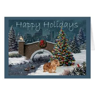 Cavalier King Charles Spaniel Ruby Christmas Eve Card