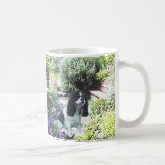 Cavalier King Charles Spaniel Savvy  Garden Mug