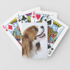 Cavalier King Charles Spaniel, side view Bicycle Playing Cards