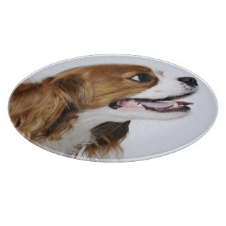 Cavalier King Charles Spaniel, side view Boards